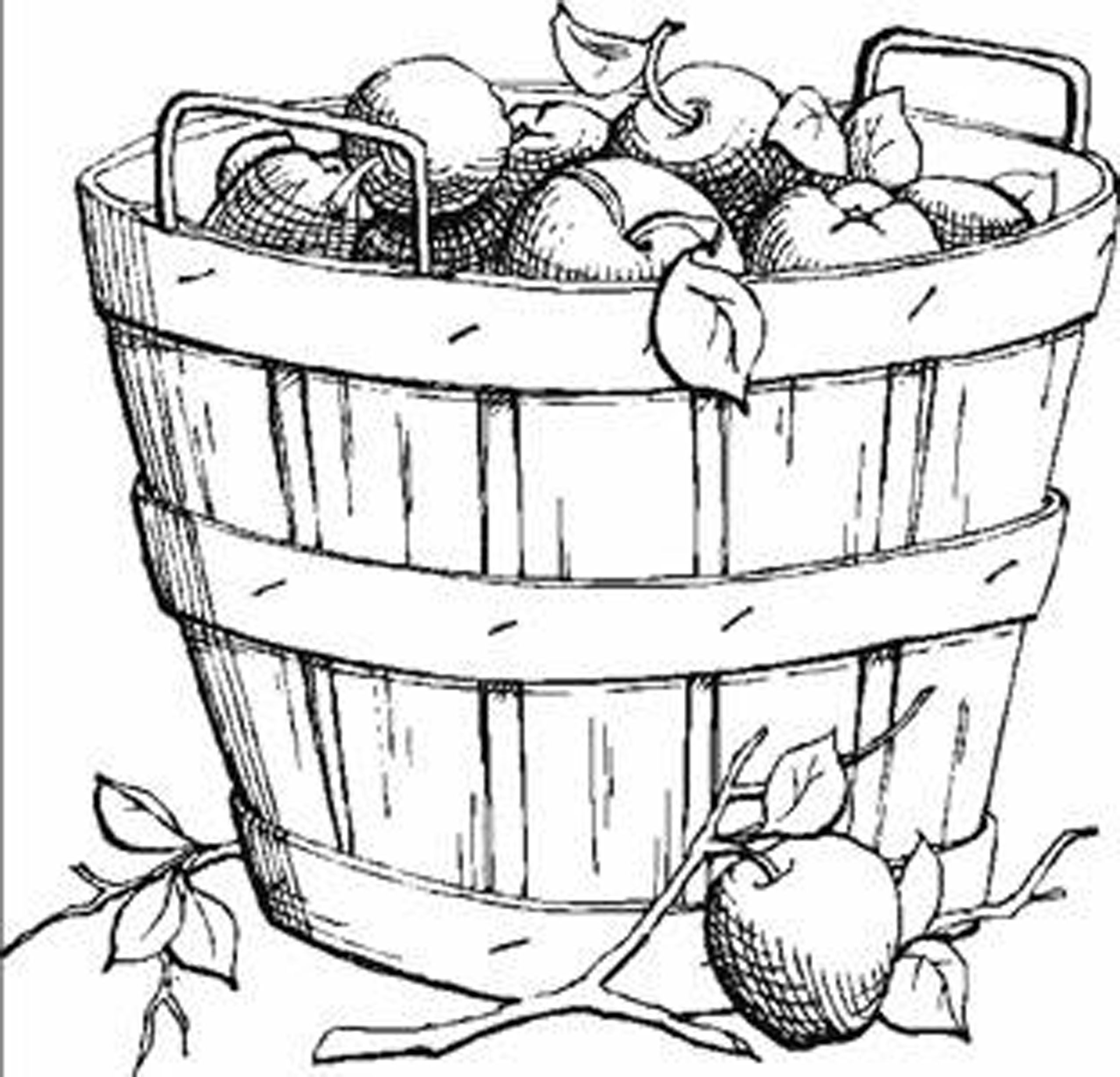 2550x2452 Harvest Fruits Fall Leaves Coloring Pages