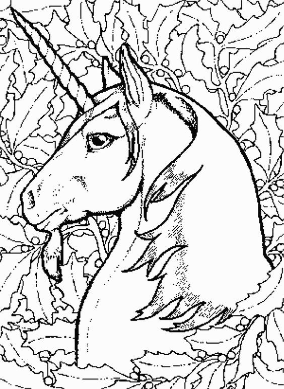 564x772 Beautiful Unicorn Coloring Pages For Adults