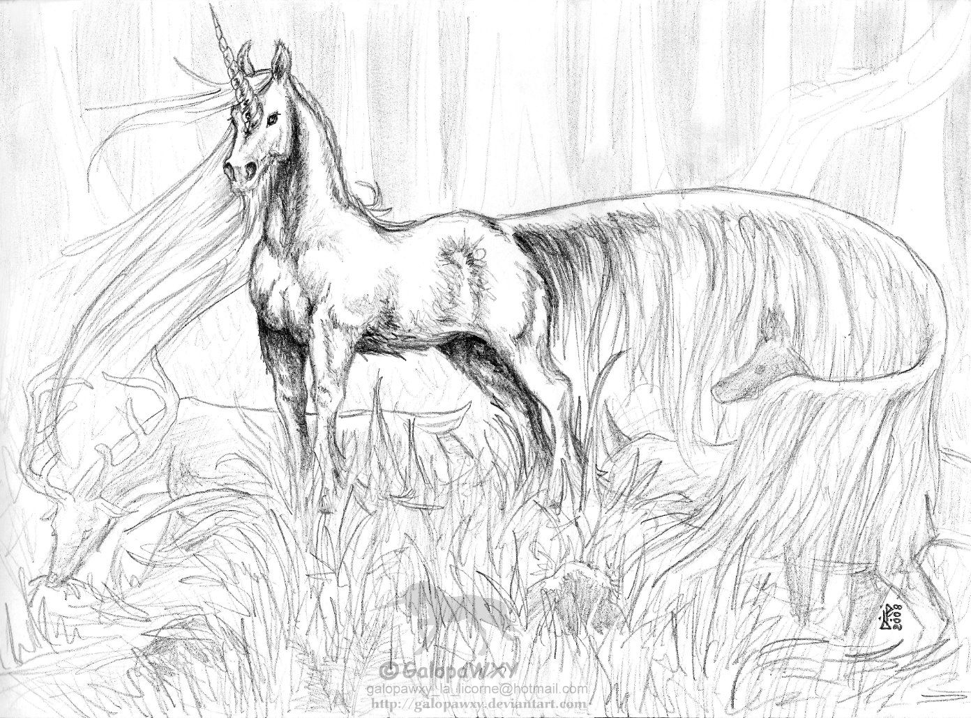 1392x1030 Unicorn Coloring Pages Adult Coloring Pages