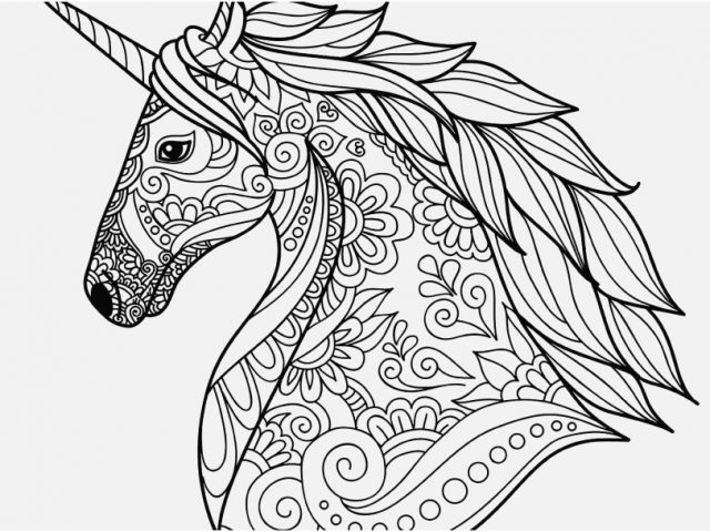 640x480 Unicorn Coloring Pages For Adults Footage Unicorn Head Simple
