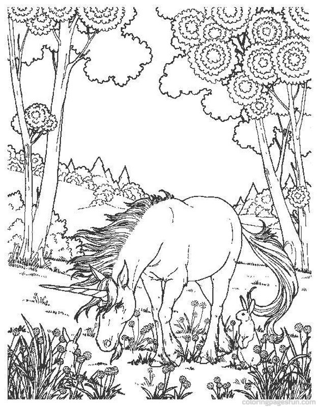 627x800 Detailed Unicorn Coloring Pages