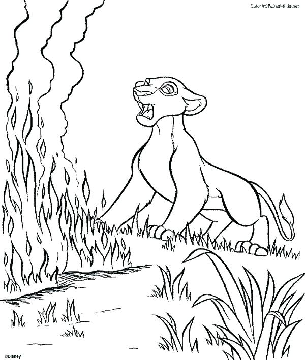Detroit Lions Coloring Pages at GetDrawings | Free download