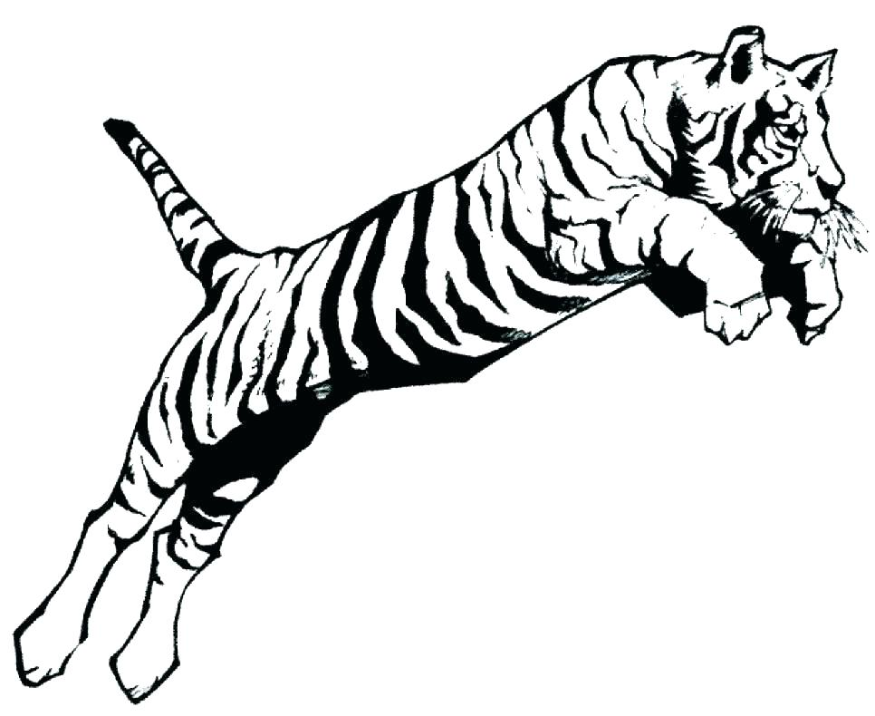 966x790 Detroit Tigers Coloring Pages Coloring Pages Tiger Shark Baby
