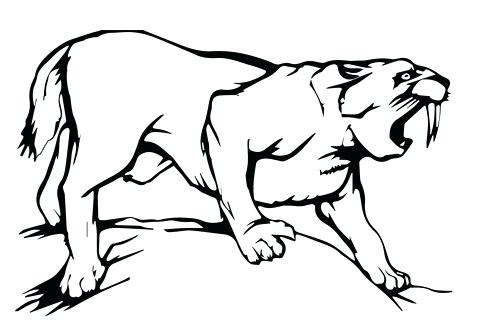 480x328 Printable Tiger Coloring Pages Click To See Printable Version