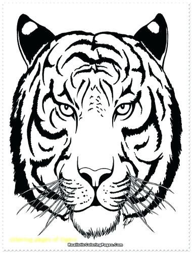 380x500 Coloring Pages Of Tigers Medium Size Of Tiger Coloring Pages