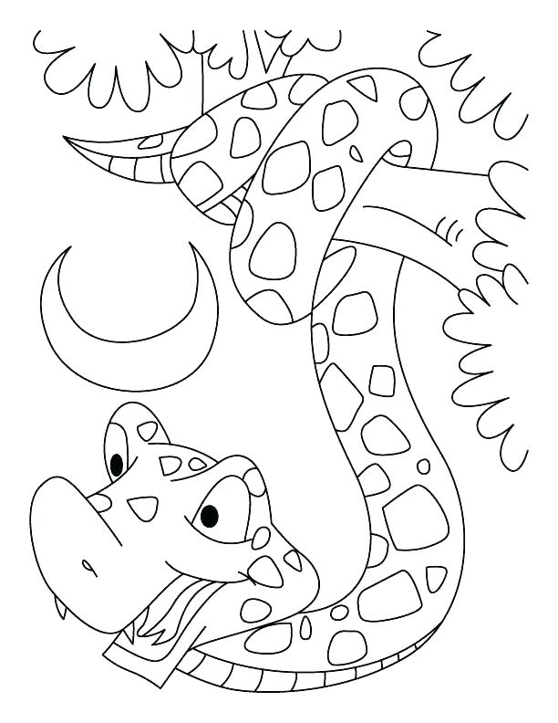 612x792 Rattlesnake Coloring Page Snake Color Page Snake Color Page Year
