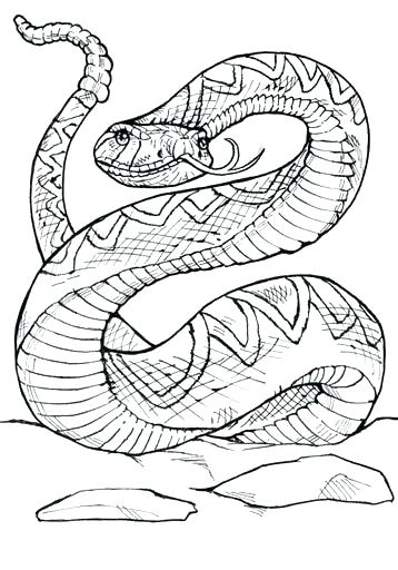 358x512 Rattlesnake Coloring Pages Rattlesnake Coloring Pages Western