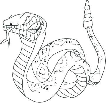 360x350 Anaconda Coloring Pages