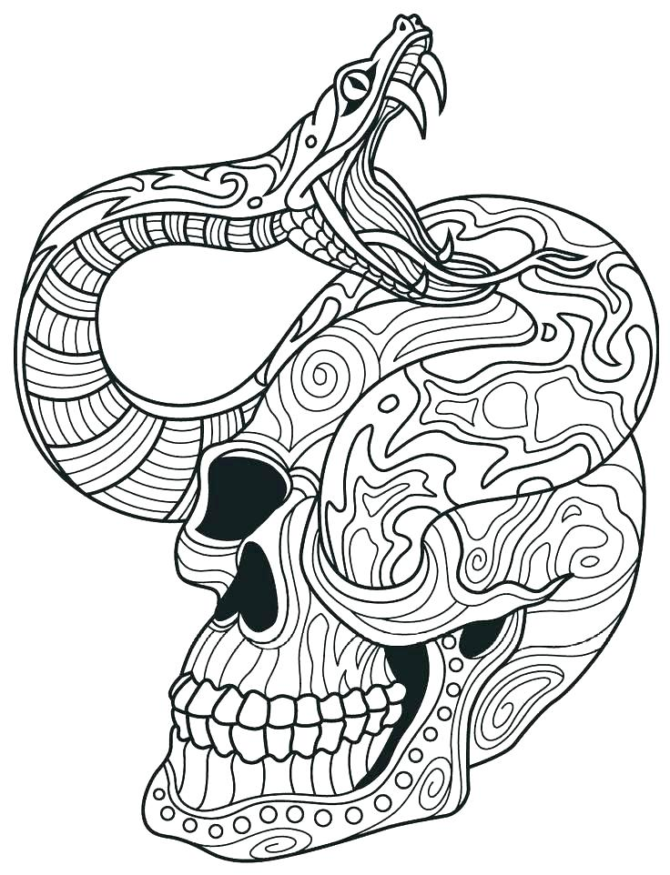 736x962 Rattlesnake Coloring Pages