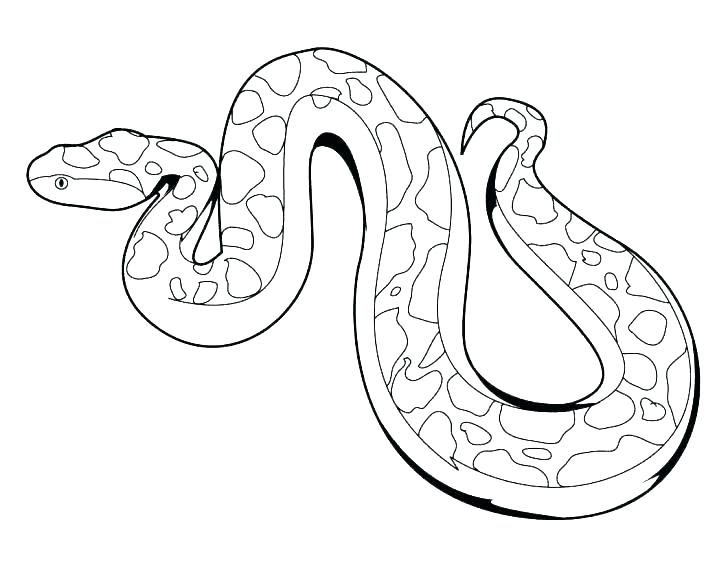 728x563 Coloring Coloring Page Snake King Cobra Pages Snakes Western