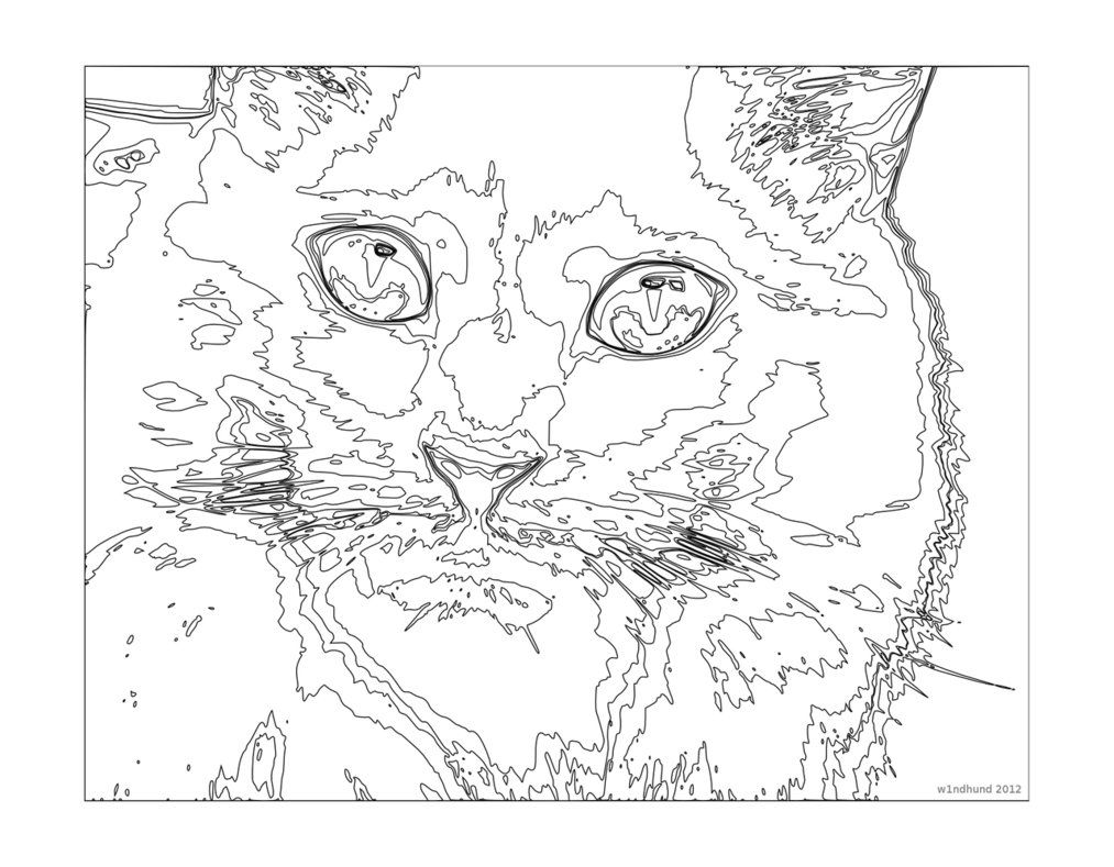 1013x789 Challenging Coloring Pages Difficult Color