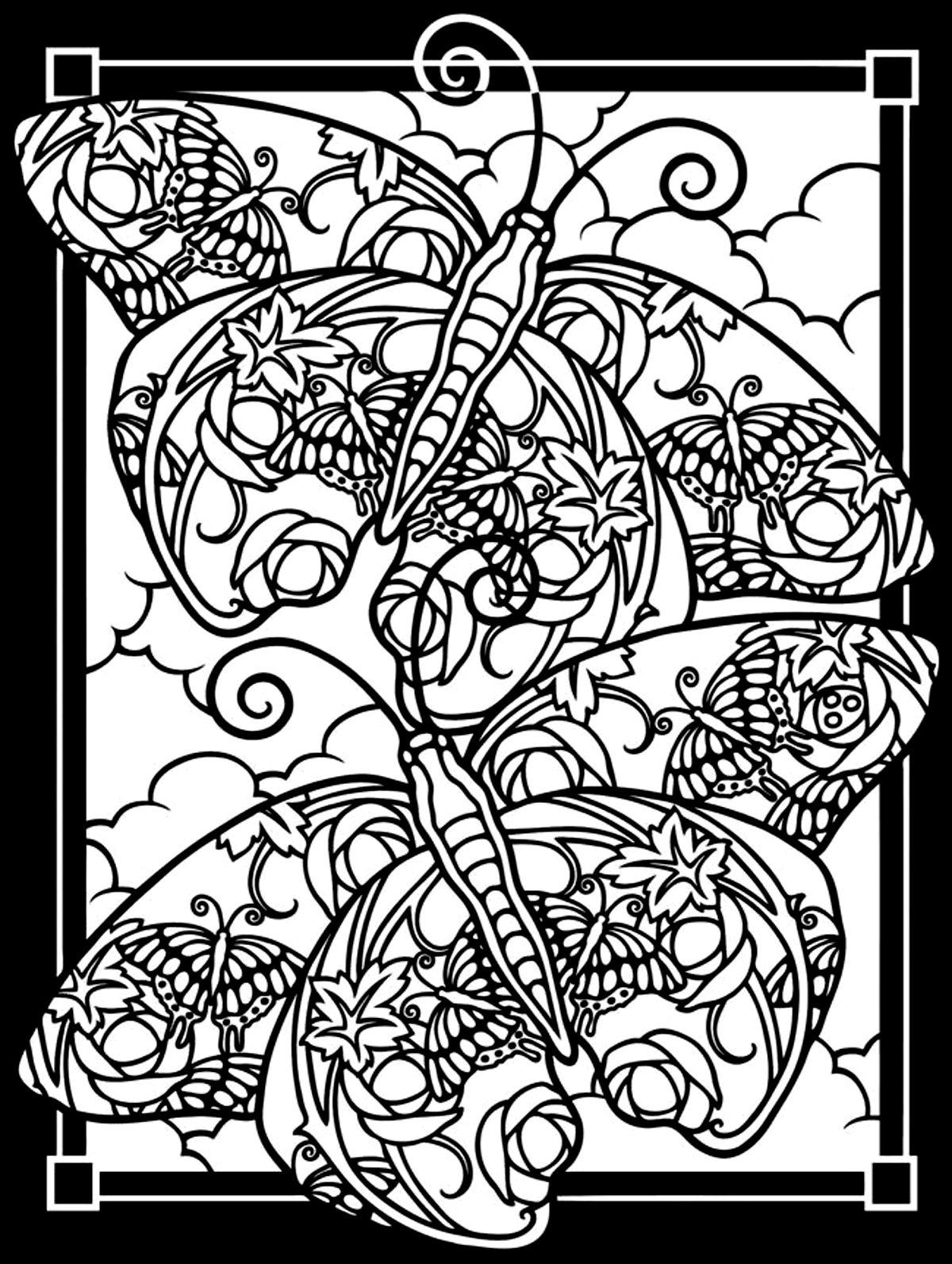 1200x1593 Two Butterflies Black Background