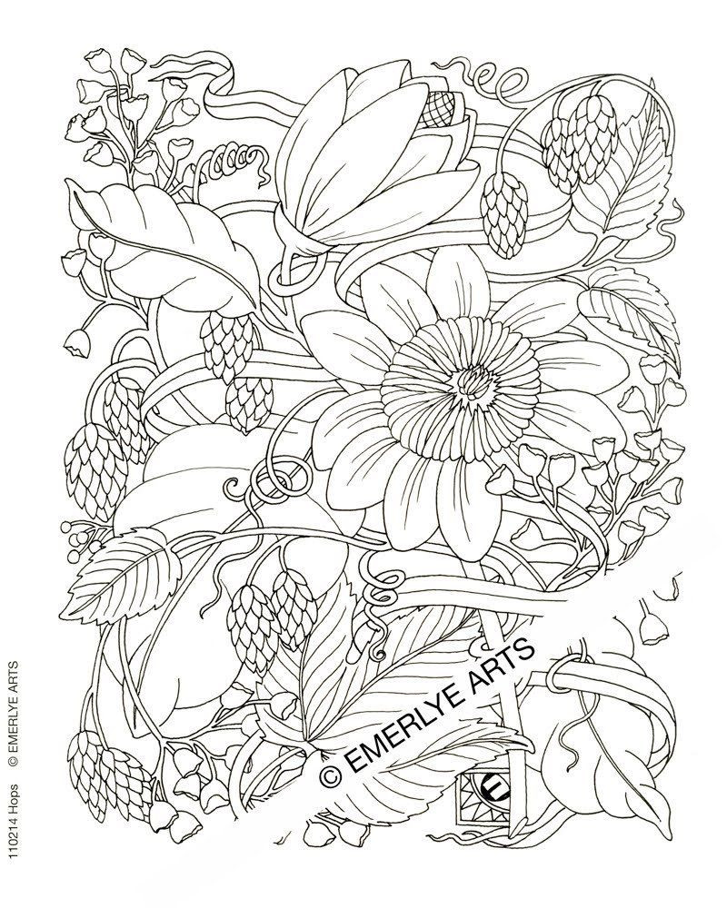 800x1000 Coloring Pages For Adults Difficult Flower Acpra