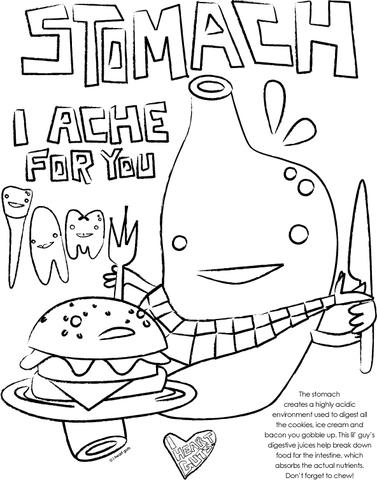 Digestive System Coloring Page At Free For