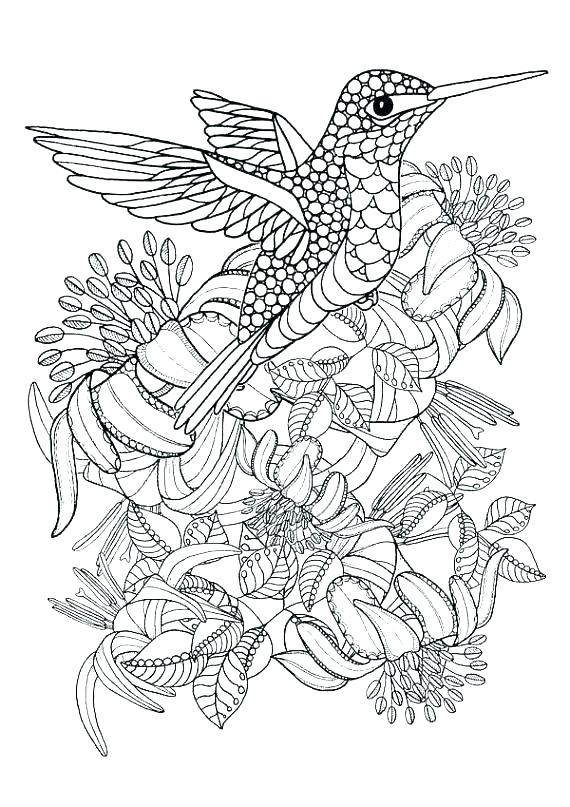 570x807 Digital Coloring Pages Downloadable Coloring Pages Fresh