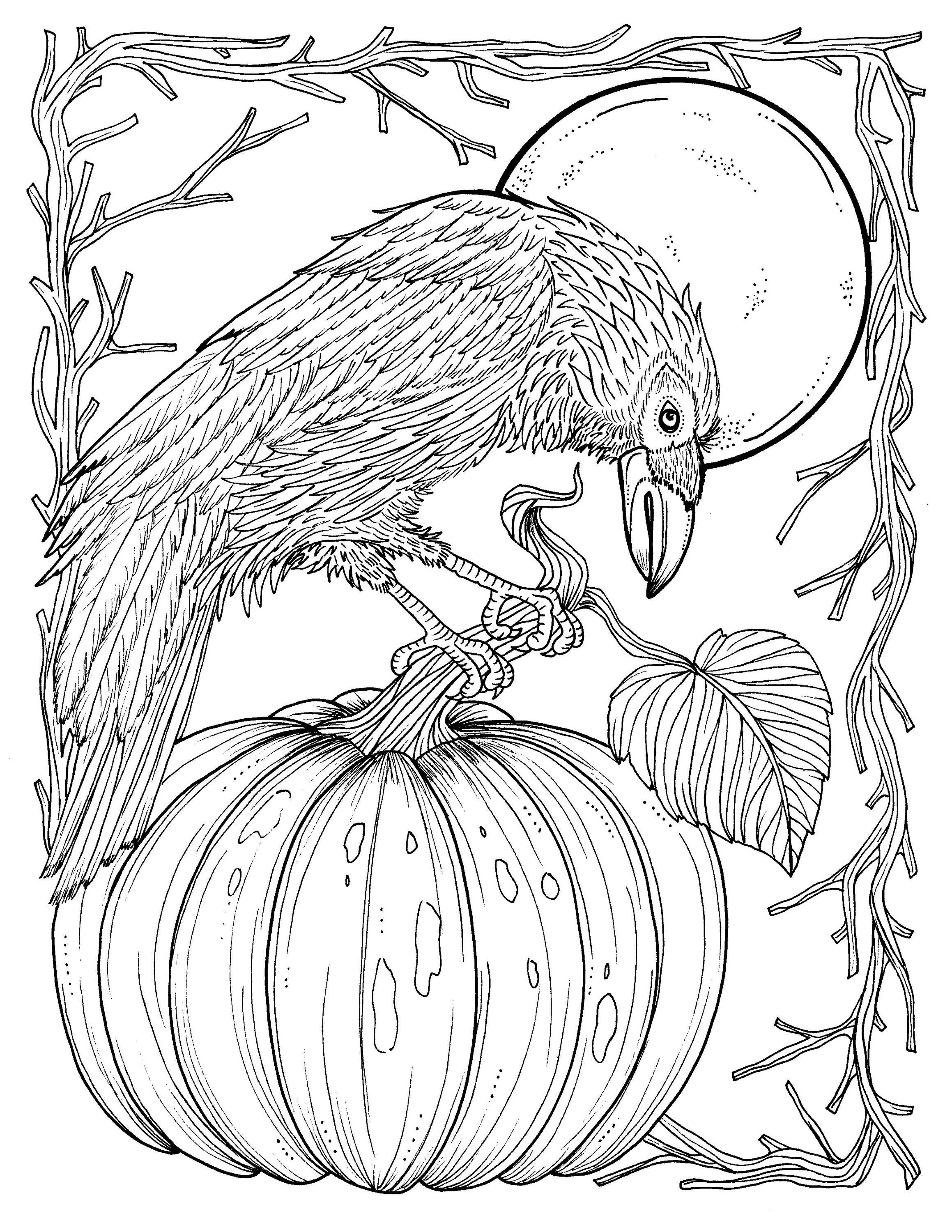 2318x3000 Fall Crow Digital Coloring Page Thanksgiving Harvest Adult