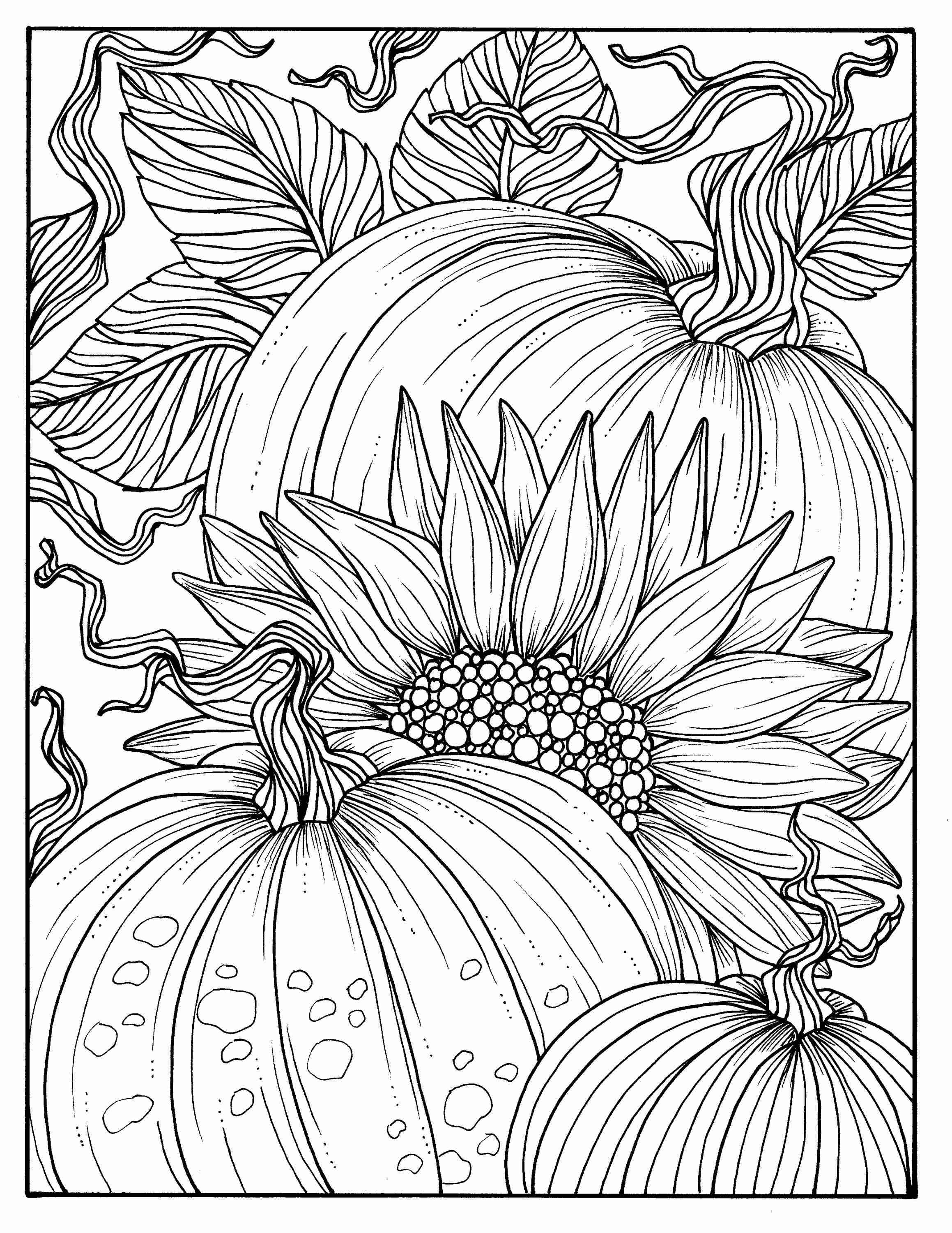 2318x3000 Pumpkins And Sunflower Digital Coloring Page Fall Adult Adorable