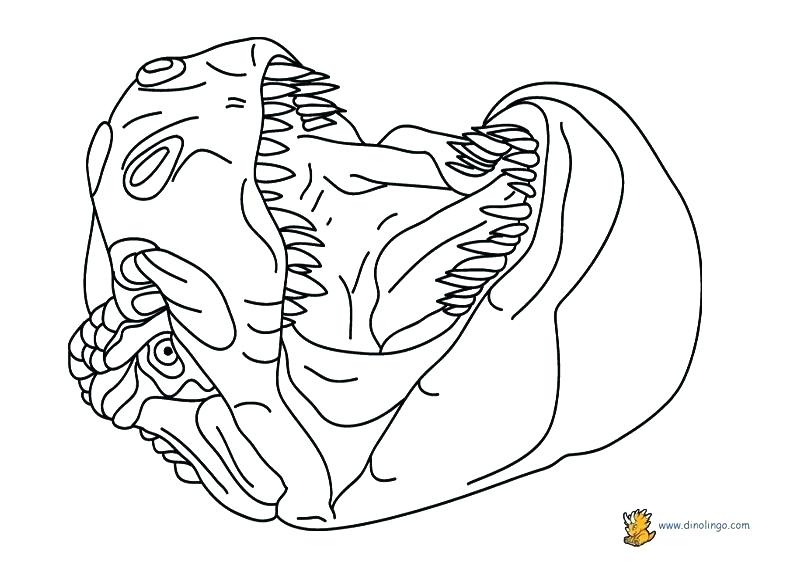 792x576 Dinosaur Coloring Page Ideal Free Dino Coloring Pages Best