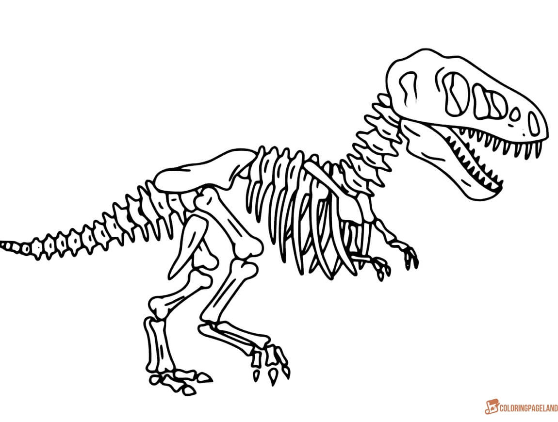 1150x870 Shocking Printable Dinosaur Bones Coloring For Skeleton Page Pict