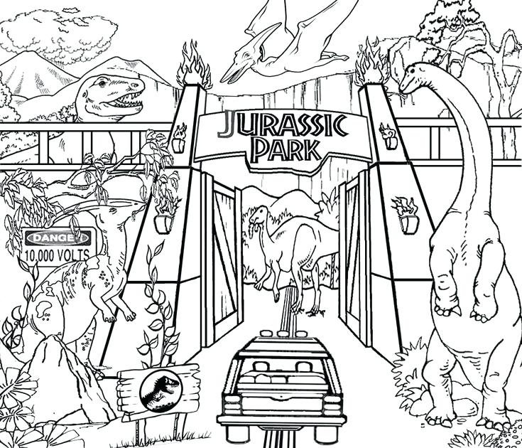 735x630 Dinosour Coloring Pages Coloring Pages Picture Preschool To Snazzy