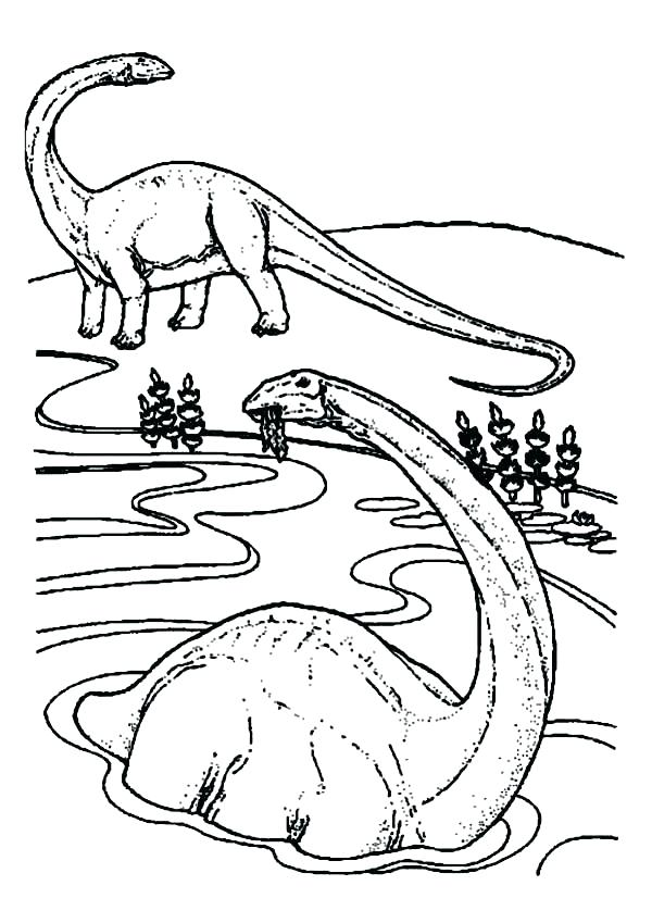 600x849 Elasmosaurus Coloring Page Swimming Dinosaurs Coloring Pages Is