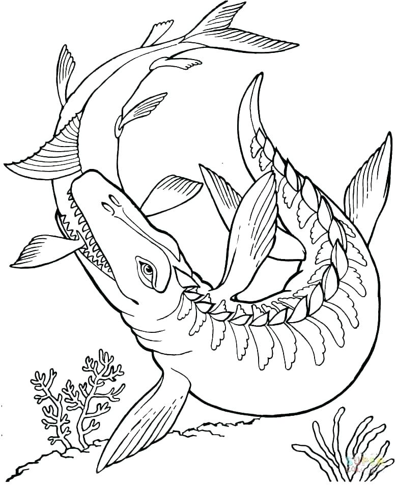 778x953 Free Coloring Sheets For Kids