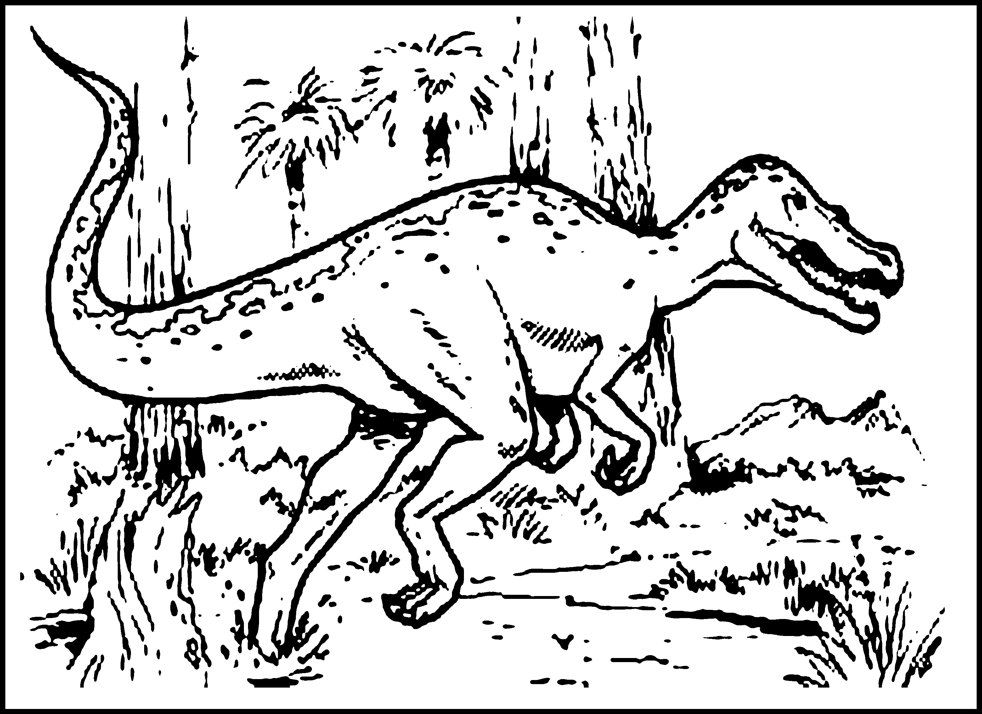 3120x2270 Dinosaur Coloring Pages For Kids And Preschoolers