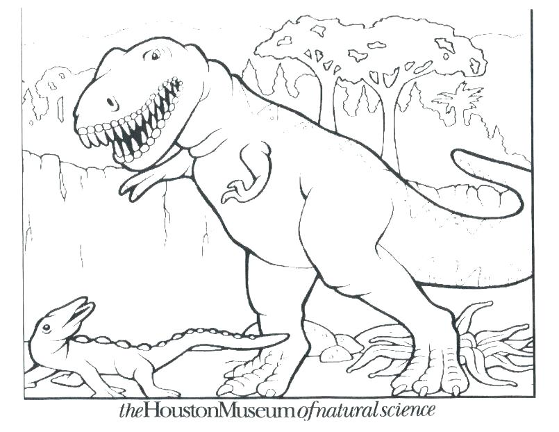 805x622 Preschool Dinosaur Coloring Pages Coloring Pages Back Torticle