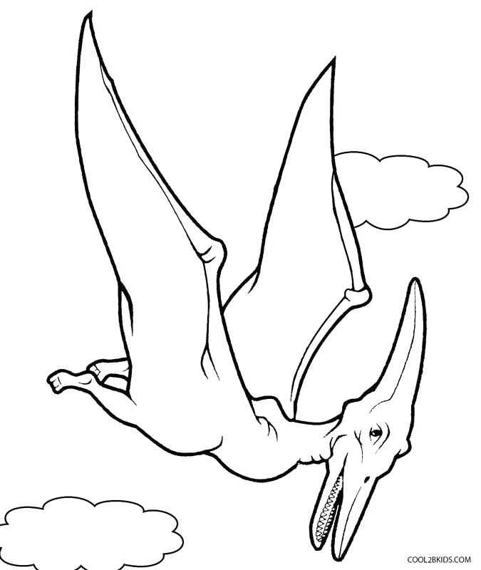 675x800 Dino Coloring Pages Flying Dinosaur Coloring Pages Dino Colouring