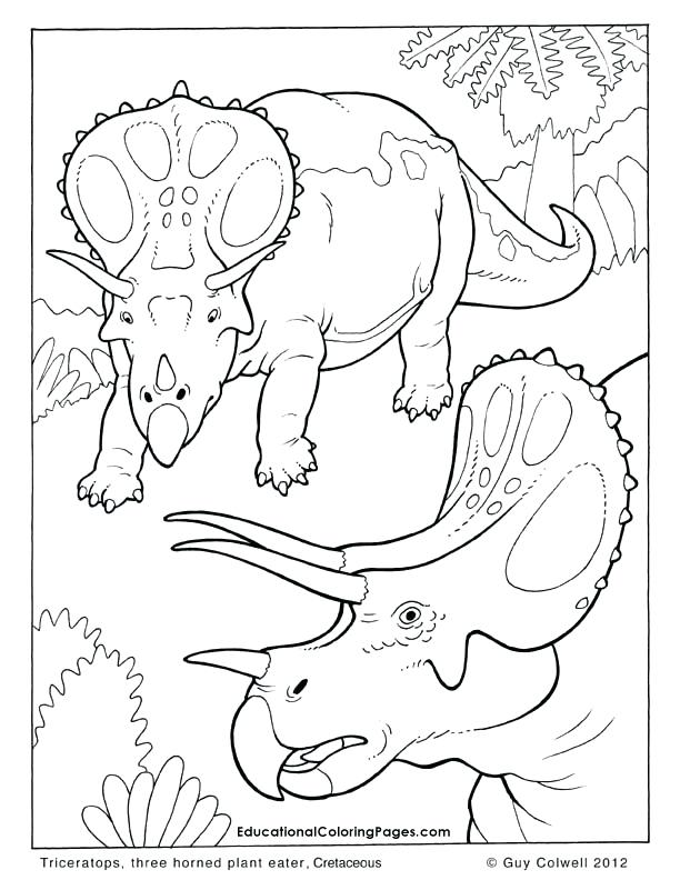 612x792 Free Coloring Pages Of Animals And Triceratops Coloring Pages