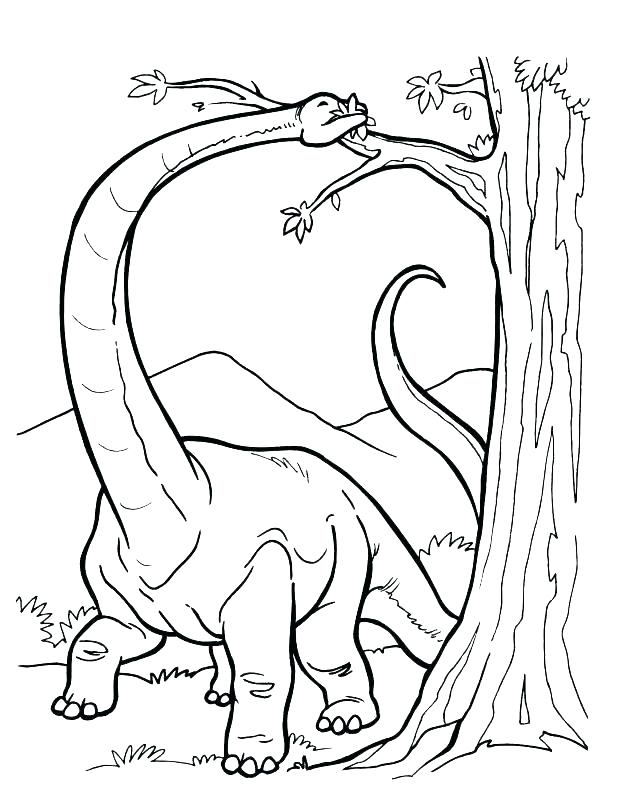 618x800 Preschool Dinosaur Coloring Pages Preschool Dinosaur Coloring