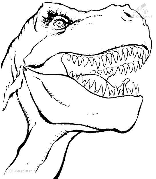 545x624 Free Printable Dinosaur Coloring Pages