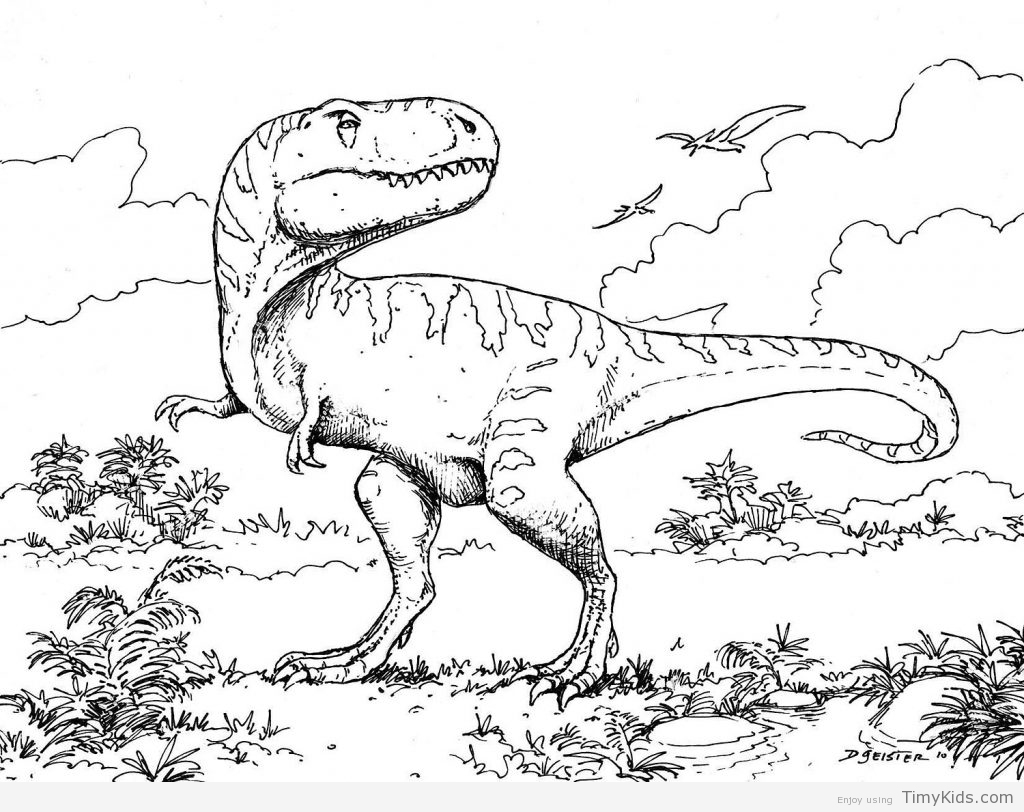 1024x812 Dinosaur Coloring Pages Free Printable Timykids Dinosaur Coloring