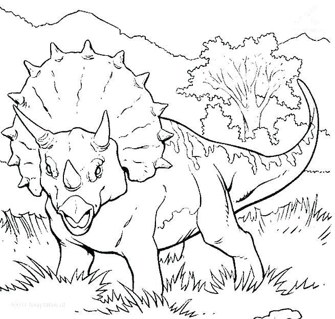 655x624 Dinosaur Coloring Page Dinosaur Coloring Pages Coloring Page Baby