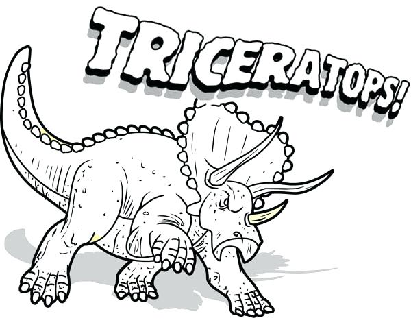 600x477 Dinosaur Coloring Pages Triceratops