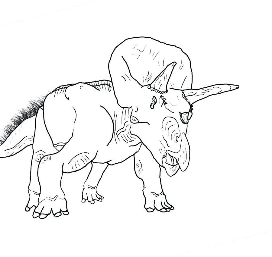 900x853 Triceratops Coloring Page Triceratops Coloring Page Triceratops