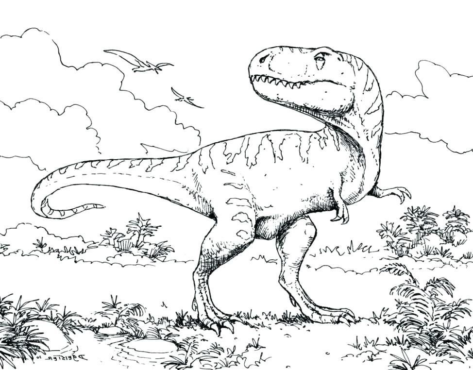 974x762 Triceratops Dinosaur Coloring Pages Cute Page Brontosaurus