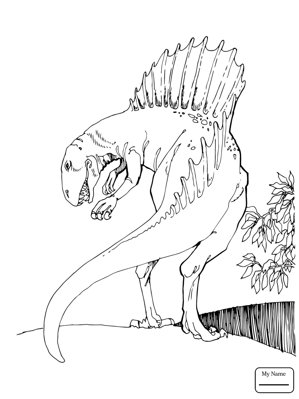 1224x1632 Timely Dinosaur Coloring Pages Spinosaurus Col