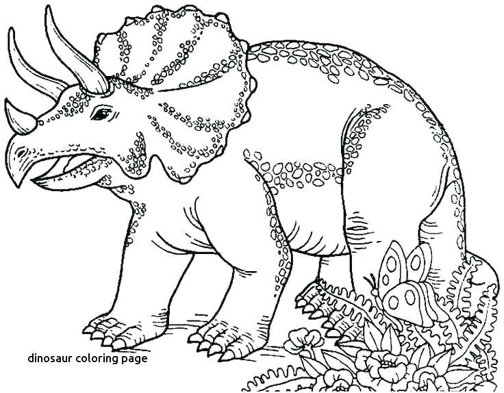 736x574 Coloring Page Dinosaur