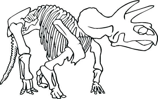 550x347 Skeleton Coloring Page Skeleton Coloring Page Bone As Dinosaur