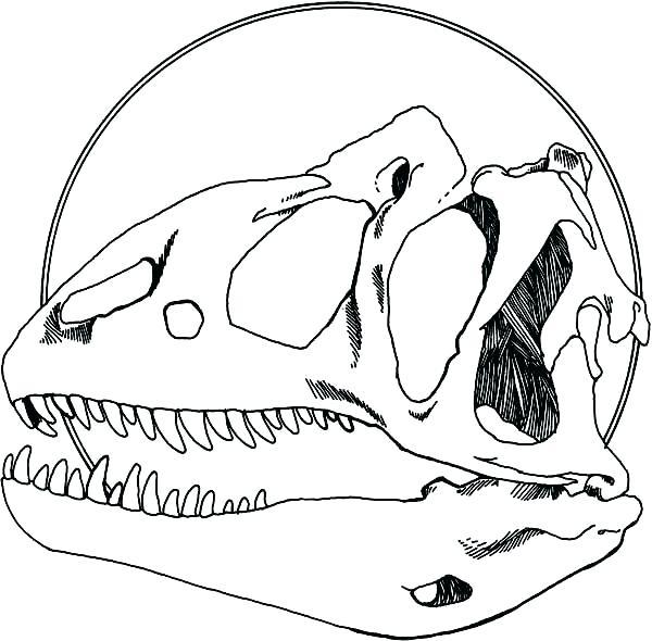 600x590 Fossil Coloring Pages Fossil Coloring Pages Dinosaur Dinosaur