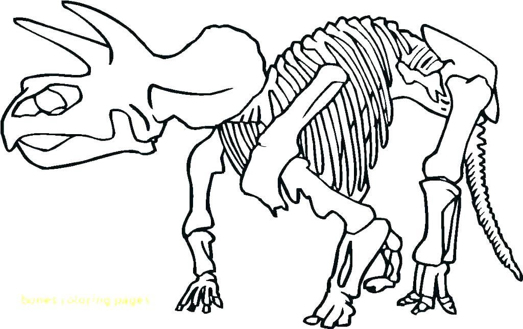 1024x645 Skeleton Coloring Sheet