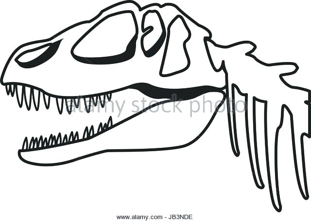 640x458 Dinosaur Fossil Coloring Pages Fossil Coloring Pages Fossil