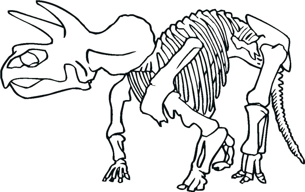 1024x645 Skeleton Head Coloring Pages Skeleton Coloring Sheet Skeleton