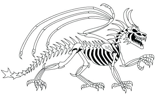 550x337 Dinosaur Bones Coloring Pages Fossils Coloring Pages Dinosaur