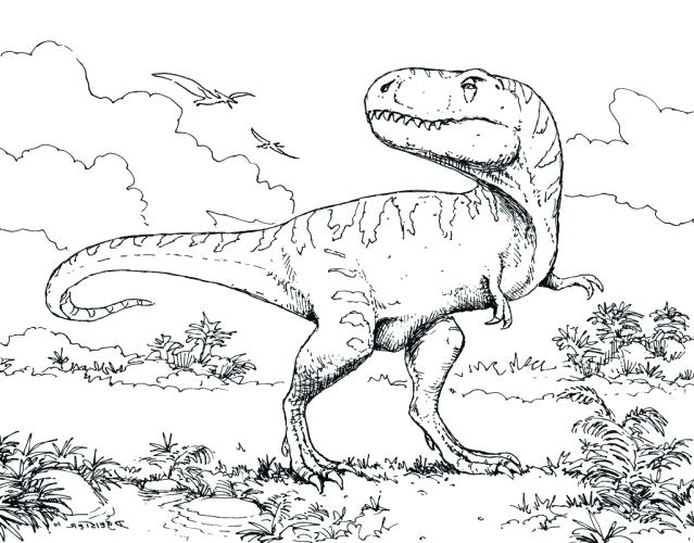 639x500 Dinosaur Coloring Pages Printable Photo Gallery Pterodactyl Flying