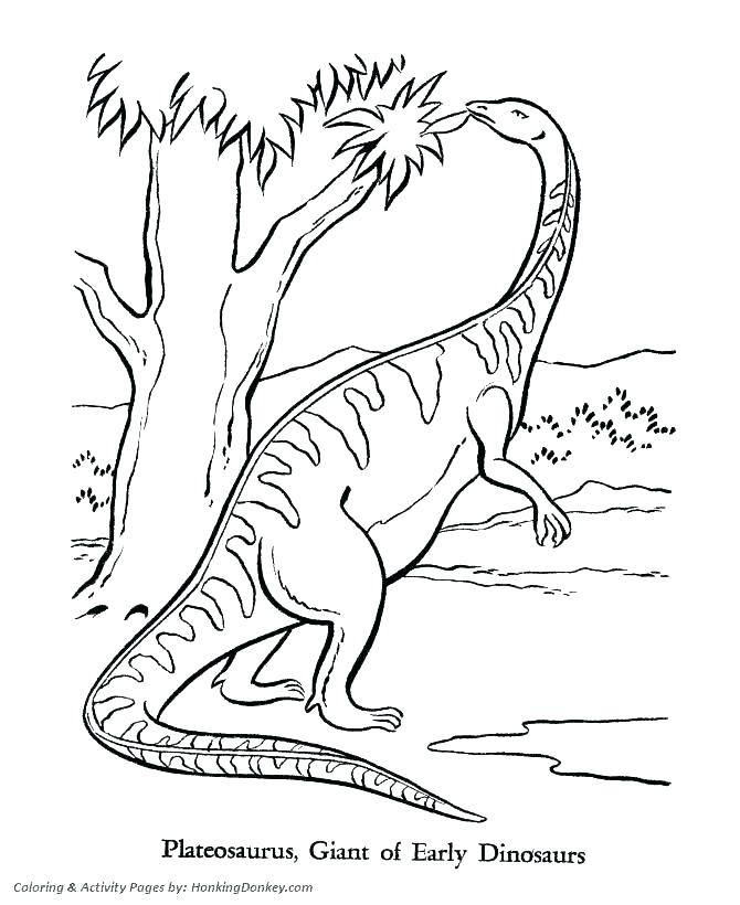 670x820 Dinosaur Pictures To Colour And Print Printable Coloring Dinosaurs