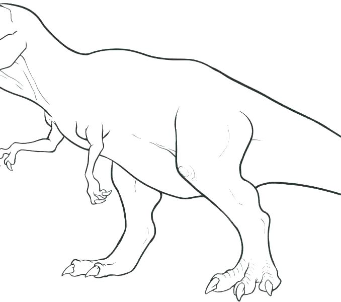 678x600 Dinosaur Skeleton Coloring Pages Skeleton Coloring Sheets Free