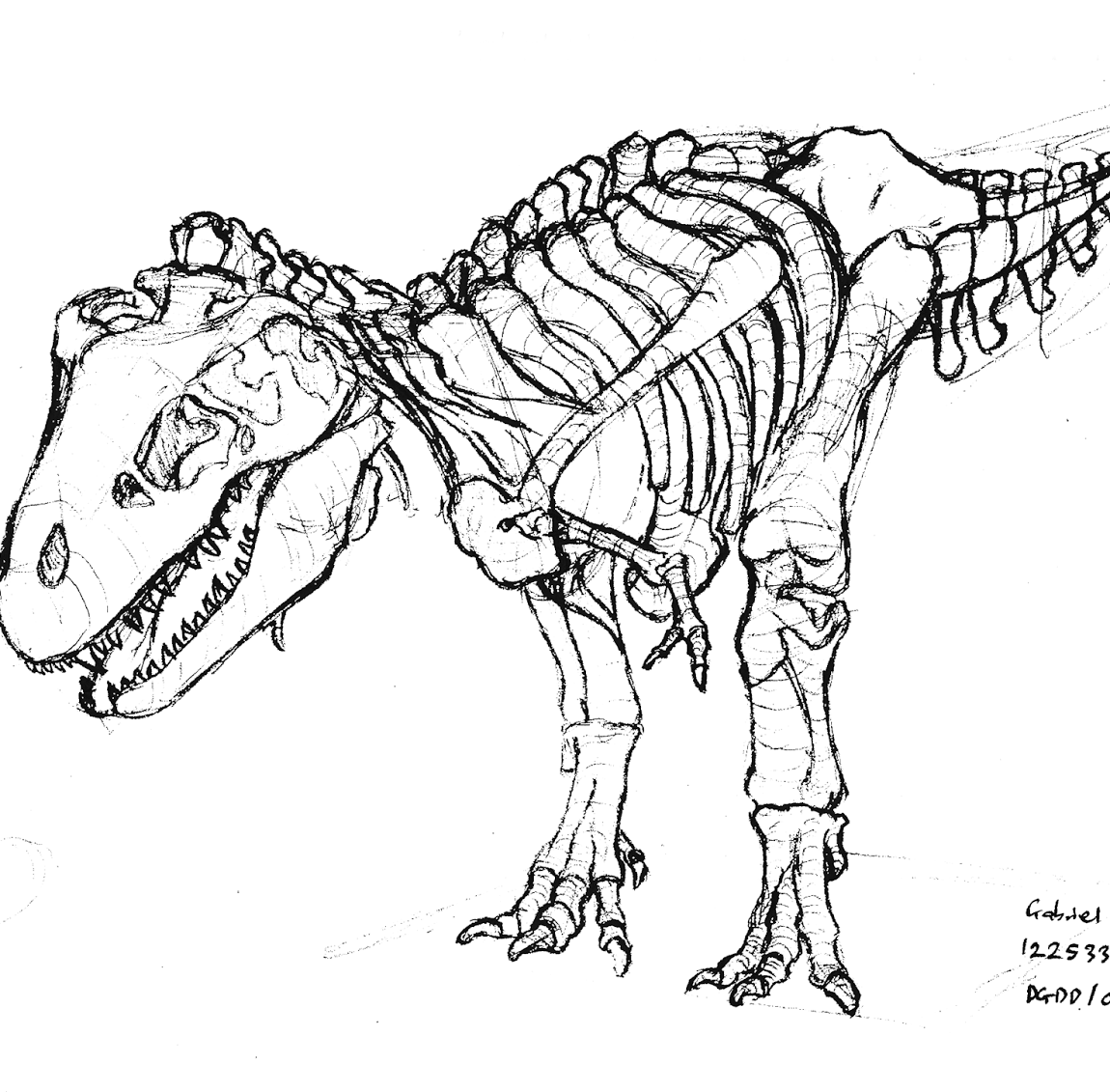 1150x1131 Dinosaur Skeleton Coloring Page Isolution Me With All Coloring Pages
