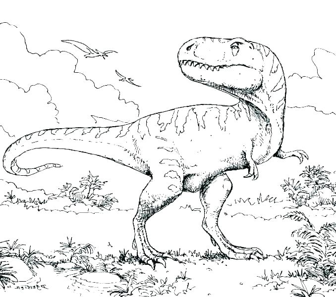678x600 Dinosaur Skeleton Coloring Pages Coloring Pages Dinosaur Skeleton